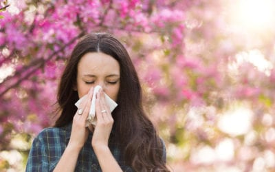 How to Alleviate Spring Allergies