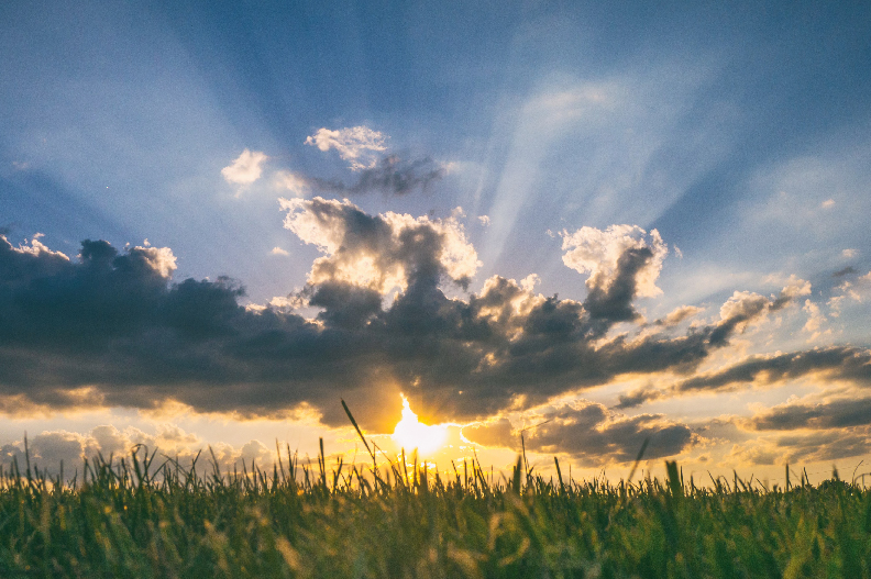 Sunshine and Happiness: 5 Reasons to Go Outside
